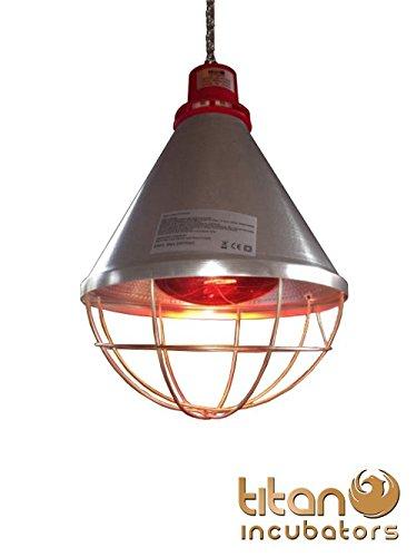 Titan Incubators Heizstrahler + 175 Watt Lampe