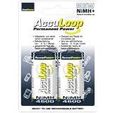 AccuPower AL4500-2 Ni-MH C