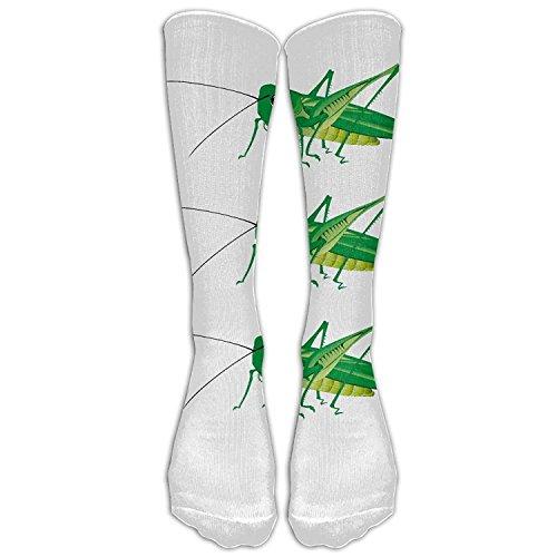 hat pillow Girl Grasshopper Tube Stocking Casual Socks Trouser Calf High Athletic Socks -