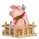 XXL Sparschwein Jimmy mit Stall Glücksschwein Geldgeschenk