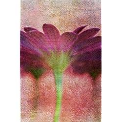 Feeling at Home, impresión artística X Marco–Marco (Fine Art Print, Flor Pared cm 89x 58