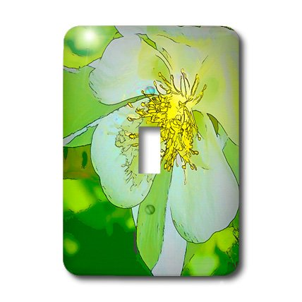3drose LLC l.s.p. 32393 _ 1 Dekorative bunt Garten Botanic Columbine Green Gold Pastell Cartoon Blumen Makro Abstrakt, Single Toggle Switch