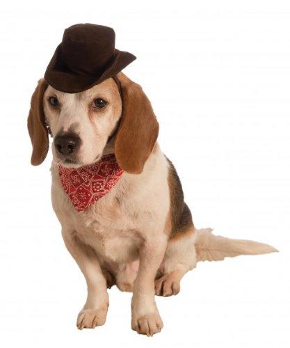 Rubies Costume Company Pet Cowboy Zubehör Set