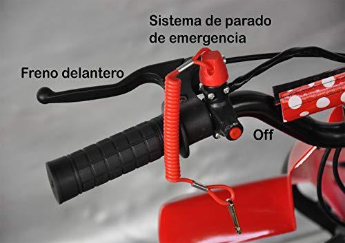 Zoom IMG-3 mini quad 49 cc atv013