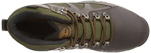 Timberland Bridgton Midf, Chaussures de randonnée montantes homme Marron (Dark Brown)