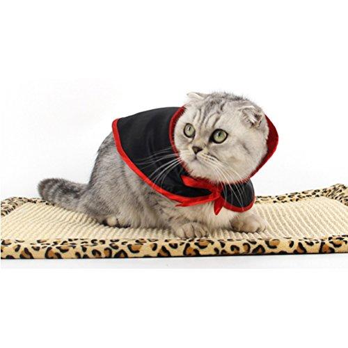Zhhlaixing Haustierprodukt Pet Dogs Cats Cosplay Soft Halloween Cute Small Cloak Costume Fancy (Cute Halloween Cat)