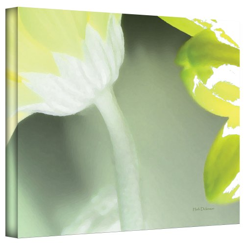 art-wall-gerber-time-ii-by-herb-dickinson-gallery-wrapped-canvas-artwork-18-by-24-inch