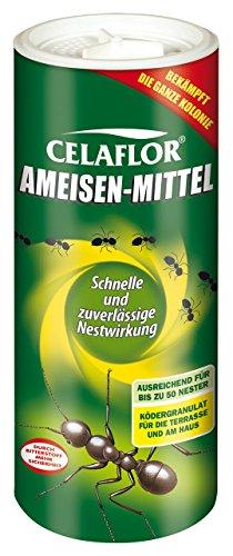 *Celaflor  Ameisen-Mittel – 500g*