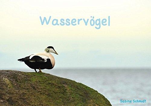 Wasservögel (Tischaufsteller DIN A5 quer): Vogelwelt des Nordens (Tischaufsteller, 14 Seiten) (CALVENDO Tiere) [Taschenbuch] [Nov 17, 2013] Schmidt, Sabine