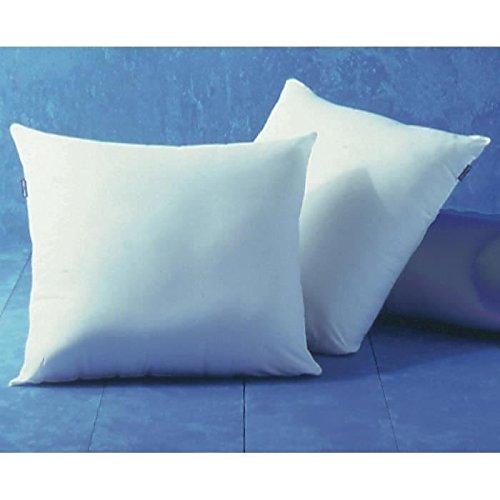 bleu-calin-lot-de-2-oreillers-hygiene-parfaite-anti-acariens-blancs-60x60-cm-oaeh