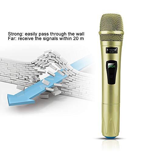 Micrófono Inalámbrico Profesional De Mano 2 Canales Studio Dual Vhf Micrófono Dinámico Para Computadora Ktv Con Sistema De Karaoke, 1