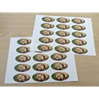 Pack of 30 Fox, 51x25mm Oval Seal Labels, Stickers for Craft, Decoration, Gift Wrapping, Presents, Envelopes, Bags or Cards