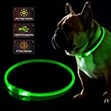 KABB LED Dog Collar, USB Rechargeable Flashing Light Up Collar for Safety At Night, Adjustable Water Resistant Bright Lighted Collar for Dogs - One Size Fits All