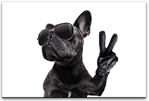 bestforhome 60x40cm Leinwandbild Französische Bulldogge mit Sonnenbrille Leinwand auf Holzrahmen