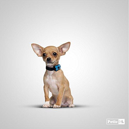 Zoom IMG-3 petic collare anti abbaio cani