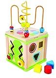 Small Foot 10074 Cube d'activités 'Insectes', y compris jeux de formes, horloge...