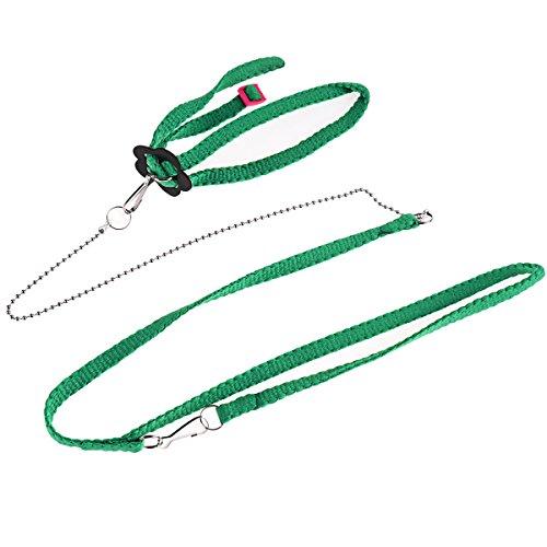 UKCOCO Verstellbare Reptil Lizard Harness Leine Nylon Blei Leine für Kleine Haustiere 1,2 M (grün) -