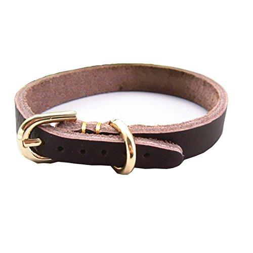 Creatwls Halsbänder Echtes Leder Gepolsterter Hundehalsband, Lederhalsband, Halsband für kleine und mittlere Hundezucht Haustierkragen - Dunkelbraune Ziehen