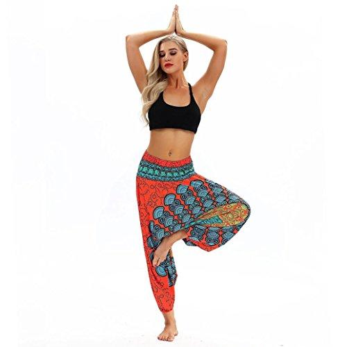 MOIKA Damen Pumphose Haremshose Pluderhose Hose Aladinhose Frauen beiläufige lose Yoga Hosen Baggy Boho Aladdin Jumpsuit Pluderhosen