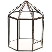 Tubayia - Terrario geométrico, Maceta, terrario, Caja para casa, jardín