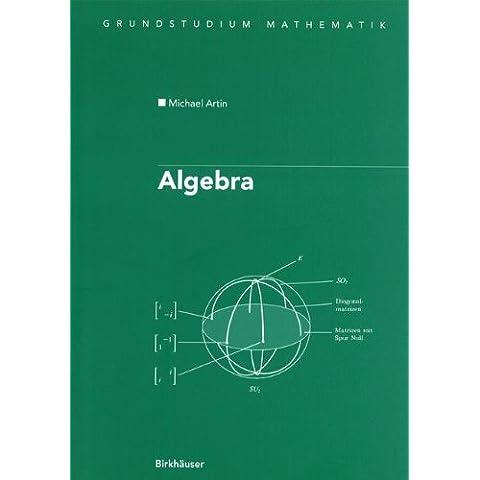 Algebra: Aus Dem Englischen Ubersetzt Von Annette a Campo (Grundstudium Mathematik)