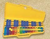 metallofono Cromatico, 25Note da Sol2a SOL3(g2-g3) con Astuccio in plastica e 2battenti. Barra colorate Ed adesivi per Note.