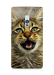 Amez designer printed 3d premium high quality back case cover for OnePlus Two (Cat)