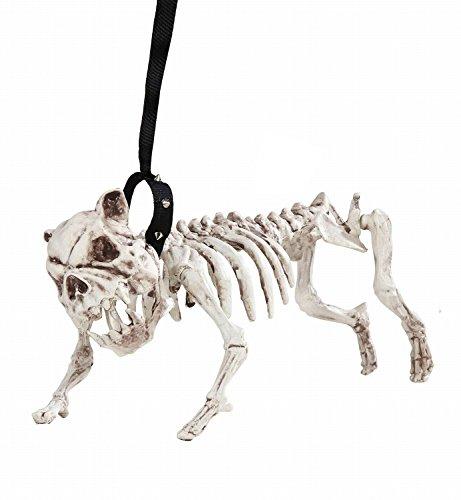 Widmann 01373 - Skelett Hund mit Leine - 45 cm lang (Halloween Tiere)