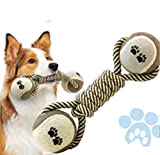 Miweel Bola de Juguete Masticar Goma de Mascota con la Cuerda, Perro Lanzador de Bola Interactiva para Mascotas Jugando Ejercicio de Entrenamiento