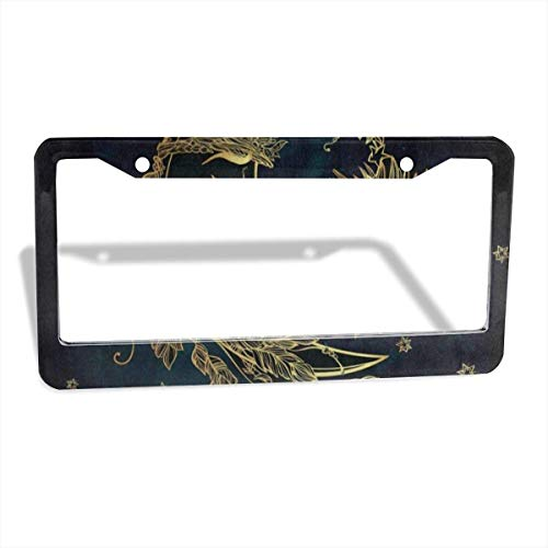FunnyCustom License Plate Frame Retro Moon Sun Face Amazing Aluminum License Plate Set Metal Tag Holder 12 x 6 Inch 2 Packs