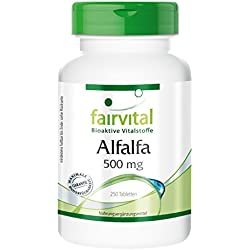 Alfalfa 500mg - GROSSPACKUNG für 8 Monate - VEGAN - 250 Tabletten - Medicago sativa