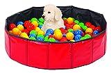 Hundepool 80 cm mit 250 Bällen Bällchenbad für Hunde Welpen in der Prägephase Hundespielzeug Welpenspielzeug Spielbälle Hundeschwimmbad Planschbecken für Hunde