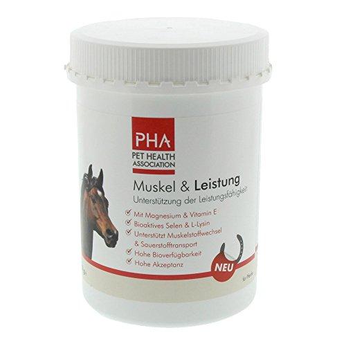PHA Pferd, Ergänzungsfutter zur Unterstützung von Muskelaufbau und Leistungsfähigkeit, Pulver, Muskel & Leistung, 850 g