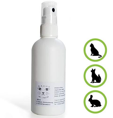 Hundegerüche aus dem Auto & der Wohnung entfernen - beseitigen, Geruchsvernichter - Geruchsstopper - Geruchsneutralisierer - Lufterfrischer - Hunde-Deo. Baron's bestes Spray *Hundefüßchen* -