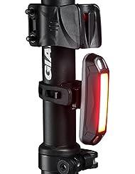 funsport- brillante USB Batería para bicicleta de montaña Piloto Trasero, Luz Trasera para Bicicleta de carretera con 30COB LED- se adapta a todas las bicicletas, casco o mochila, carrito de bebé, niños, mejor luz trasera de bicicleta para ciclismo, senderismo, correr etc.