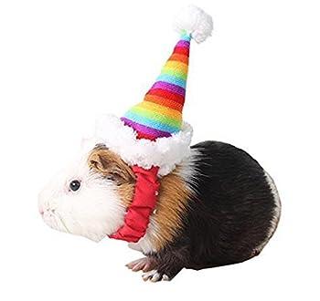 Pengmma Rainbow Bonnet de Noël pour animal domestique Hamster écureuil Costume