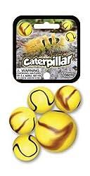 Caterpillar Marble set