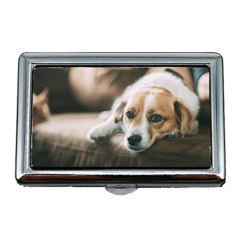 Custodia per sigarette, occhi per cani Animali domestici per animali Cute Looking Mammal Seeing, porta biglietti da visita Custodia per biglietti da visita in acciaio inossidabile