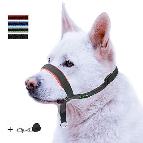 ILEPARK Gepolsterter Hundehalfter aus Leder - Hundehalsband-Halfter der Ziehen verhindert, Einstellbar, Maulkorb Hunde (M, Rot) -