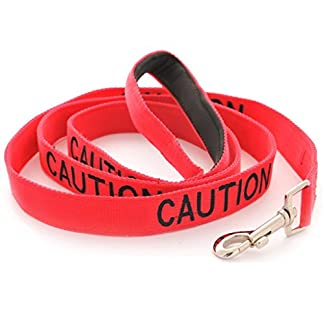 CAUTION (Do Not Approach) Red Warning Dog Colour Coded Luxury Padded Personalised 1.2m 4ft Lead Leash To Prevent Accidents or Incidents. Dog Award Winning 41hG1pCtjnL