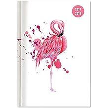 Collegetimer Flamingo 2017/2018 - Schülerkalender A5 - Day By Day - 352 Seiten