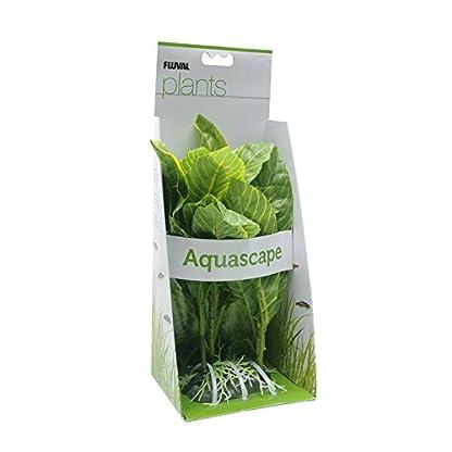 Fluval Yellow Stripe Spathiphyllum Plant for Aquarium, 9-Inch 2