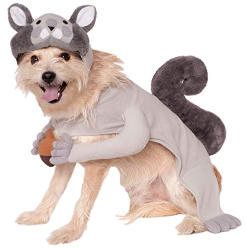 Hunde Für Kostüm Eichhörnchen - Rubies Eichhörnchen-Kostüm, S, Mehrfarbig