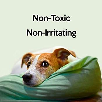 Pet Health Solutions Urinase aux Taches et d'odeur Eliminator, 16-Ounce, n/a