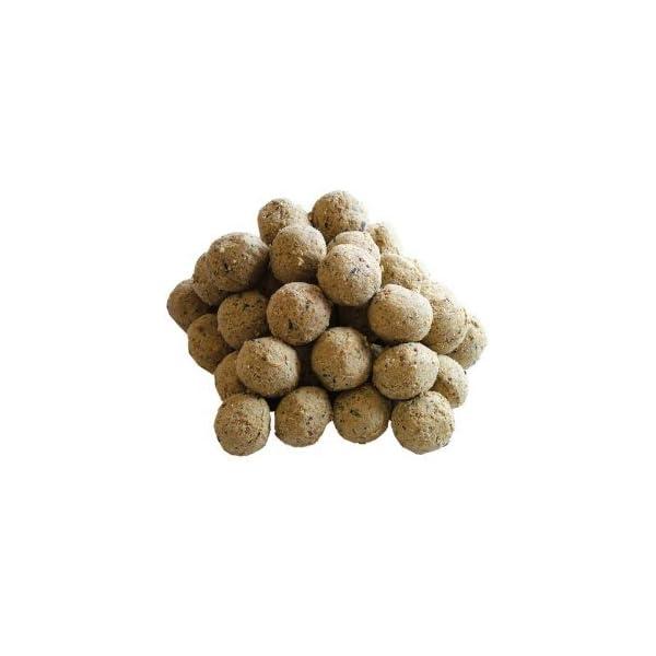 150 Fat Balls For Wild Birds 41hHnIslR7L