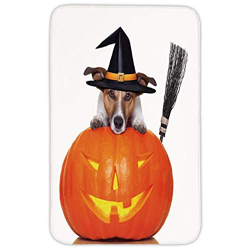 XIAOYI Rectangular Area Rug Mat Rug,Halloween,Witch Dog with a Broomstick on Large Pumpkin Fun Humorous Hilarious Animal Print,Multicolor,Home Decor Mat with Non Slip Backing
