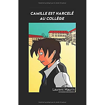 Camille est harcelé au collège (livre enfant,adolescent & parent)