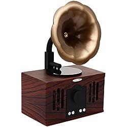 haihuic Altavoz clásico de Bluetooth del vintage retro con el altavoz estéreo doble, fonógrafo de la placa giratoria Gramófono Record Player MP3 Recording