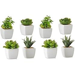 Dcasa - Pack 8 Cactus artificial plástico 10 cm maceta de porcelana.