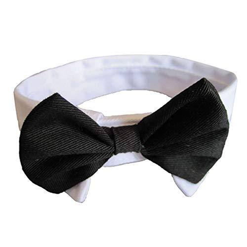 Einstellbare Haustiere Hund Fliege Haustier Kostüm Krawatte Kragen für kleine Hunde Puppy Grooming Zubehör von TheBigThumb -